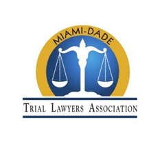 Trial Lawyer Association